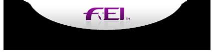 FEI Logo